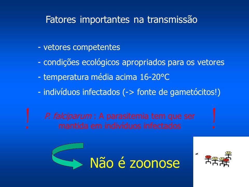 ! Não é zoonose Fatores importantes na transmissão