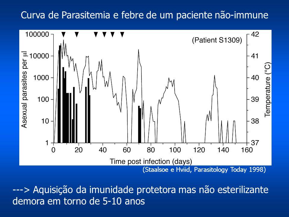 Curva de Parasitemia e febre de um paciente não-immune