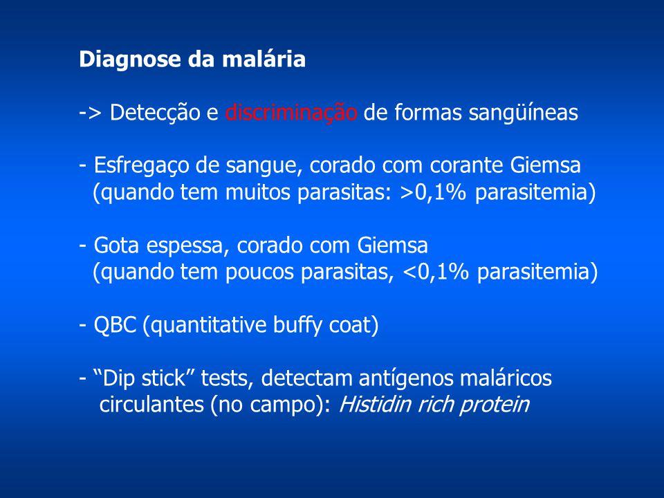 Diagnose da malária -> Detecção e discriminação de formas sangüíneas. - Esfregaço de sangue, corado com corante Giemsa.