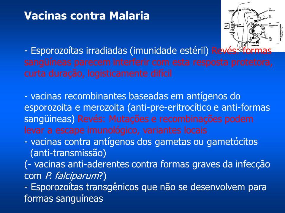 Vacinas contra Malaria