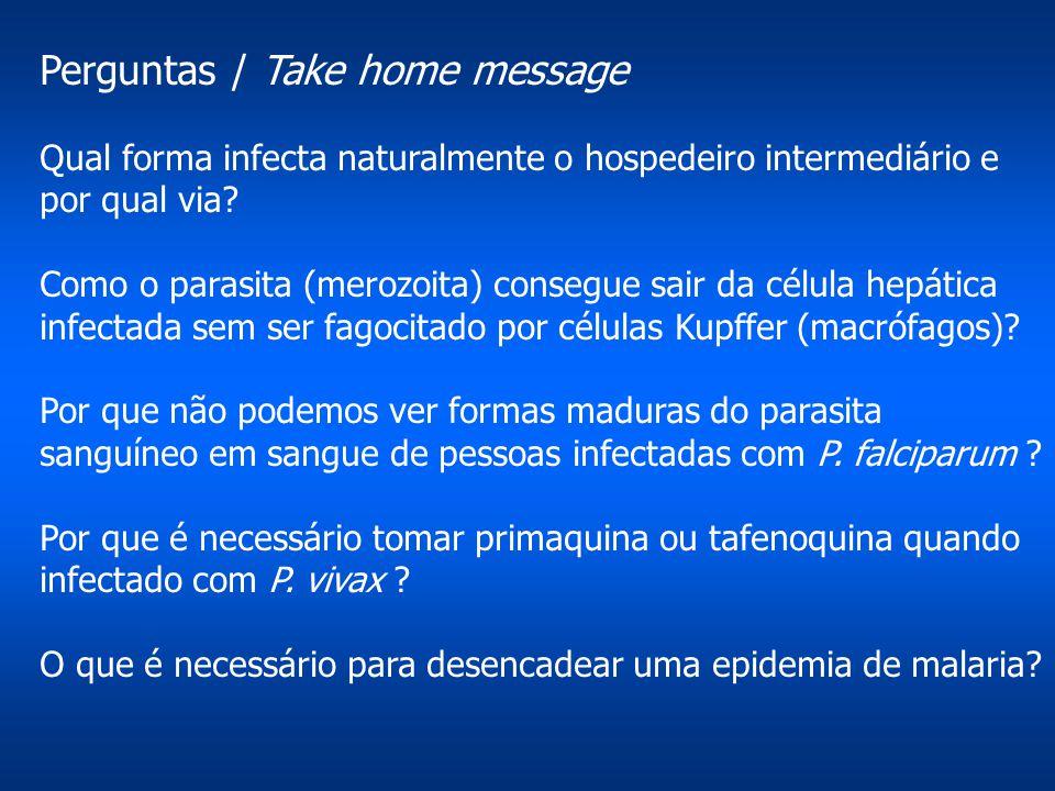 Perguntas / Take home message