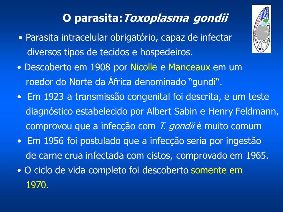 O parasita:Toxoplasma gondii
