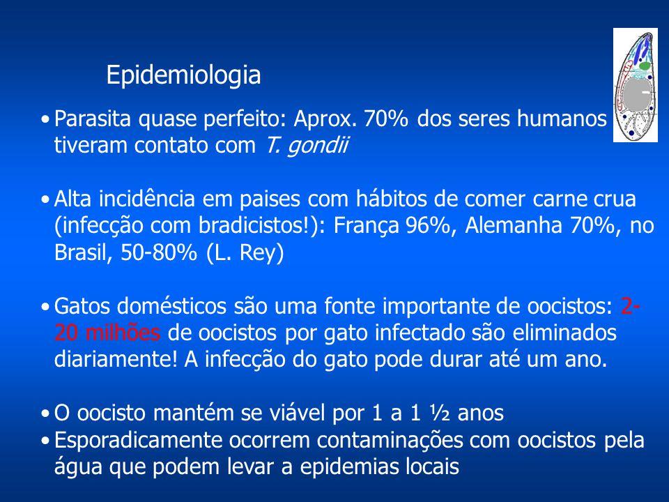 Epidemiologia Parasita quase perfeito: Aprox. 70% dos seres humanos tiveram contato com T. gondii.
