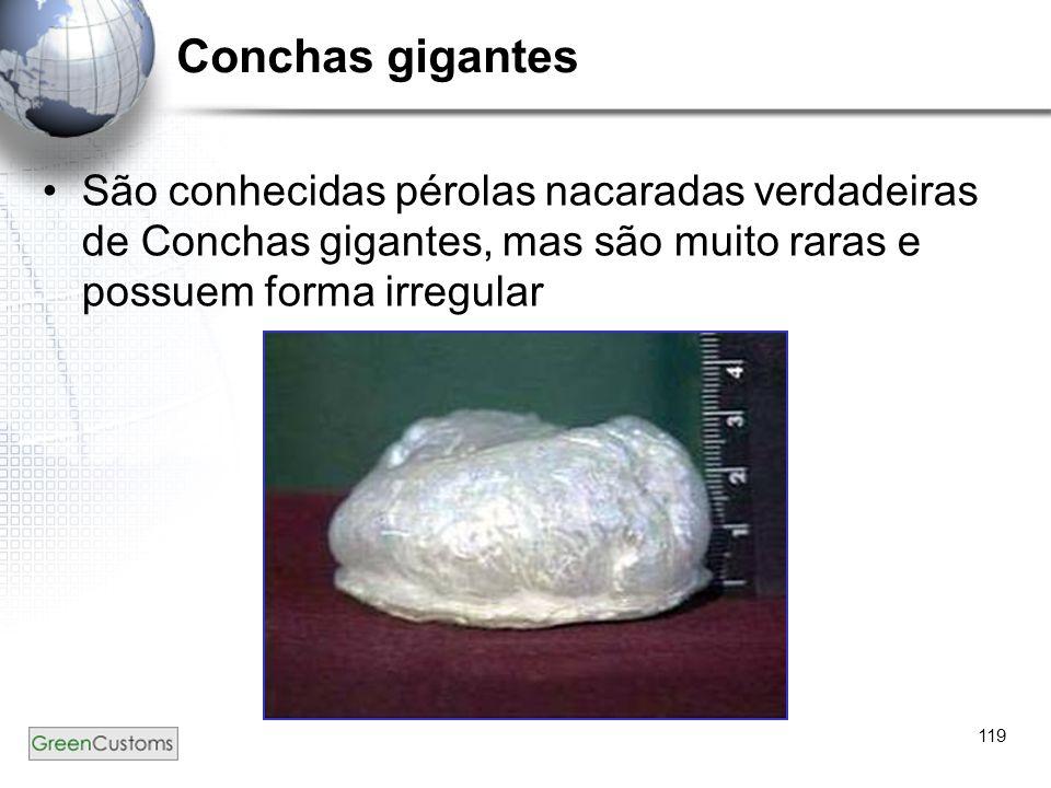 Conchas gigantes São conhecidas pérolas nacaradas verdadeiras de Conchas gigantes, mas são muito raras e possuem forma irregular.