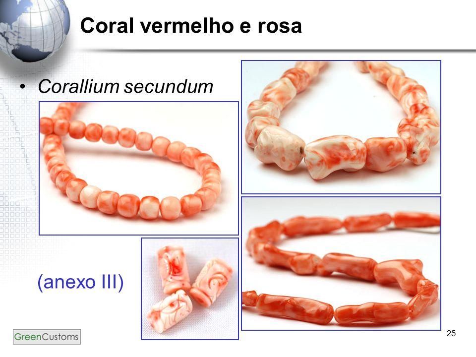 Coral vermelho e rosa Corallium secundum (anexo III)