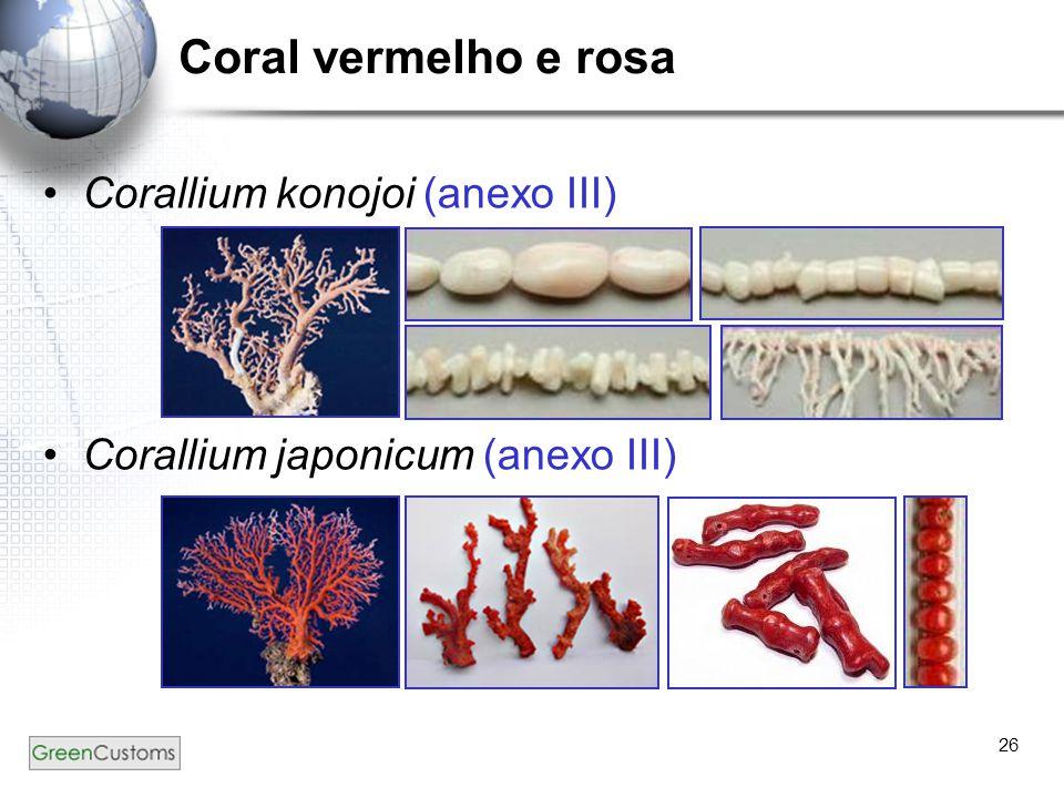 Coral vermelho e rosa Corallium konojoi (anexo III)