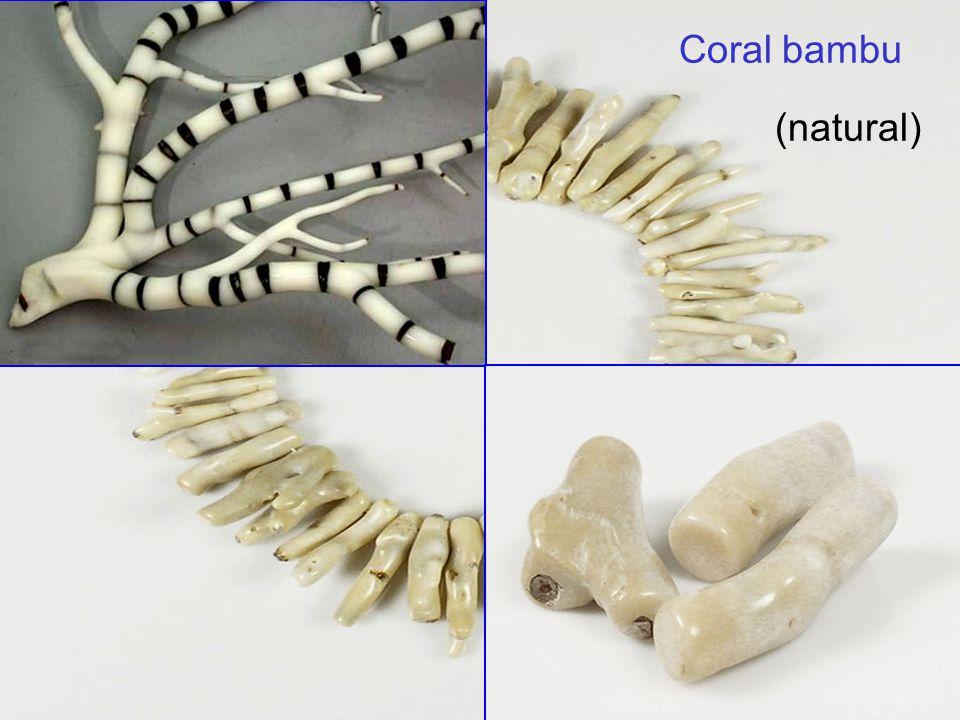 Coral bambu (natural) 34