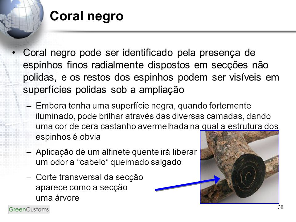 Coral negro