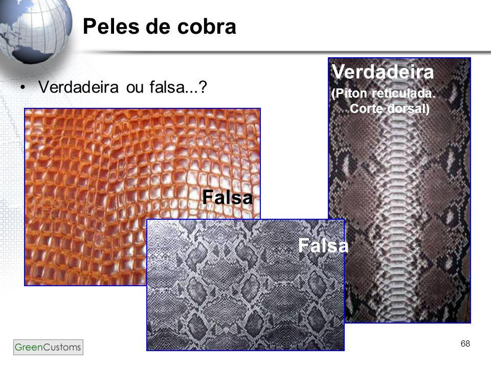 Peles de cobra Verdadeira Falsa Falsa Verdadeira ou falsa...