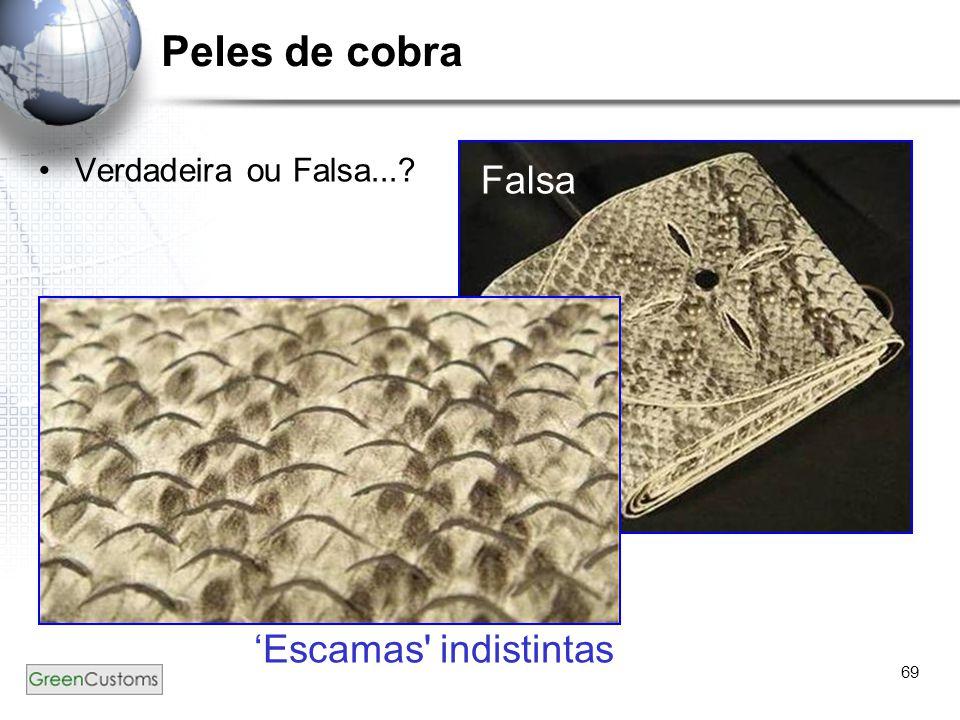 Peles de cobra Verdadeira ou Falsa... Falsa 'Escamas indistintas