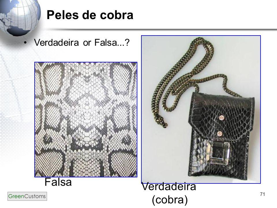 Peles de cobra Verdadeira or Falsa... Falsa Verdadeira (cobra)