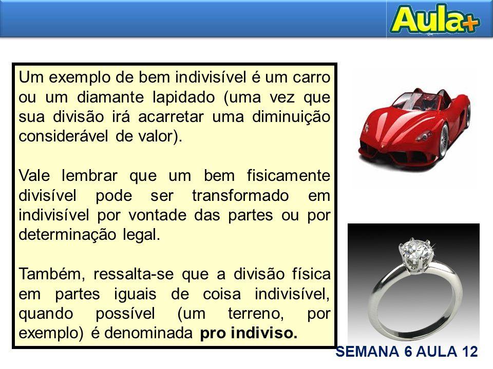 Um exemplo de bem indivisível é um carro ou um diamante lapidado (uma vez que sua divisão irá acarretar uma diminuição considerável de valor).