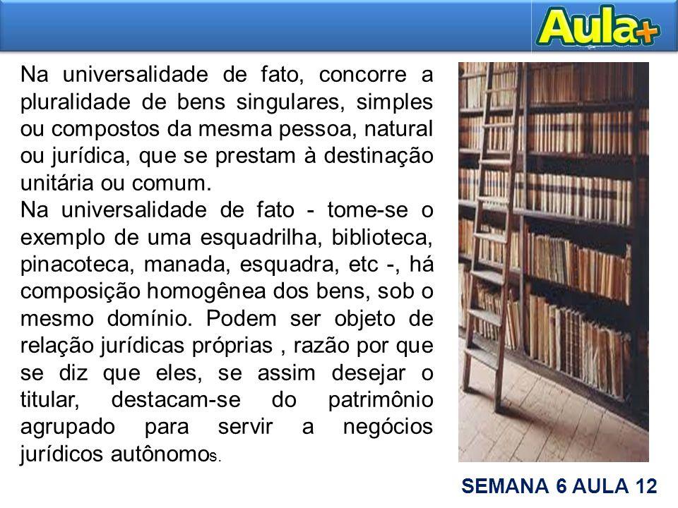 Na universalidade de fato, concorre a pluralidade de bens singulares, simples ou compostos da mesma pessoa, natural ou jurídica, que se prestam à destinação unitária ou comum.