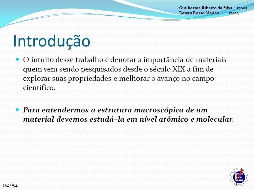 Guilherme Ribeiro da Silva 17005