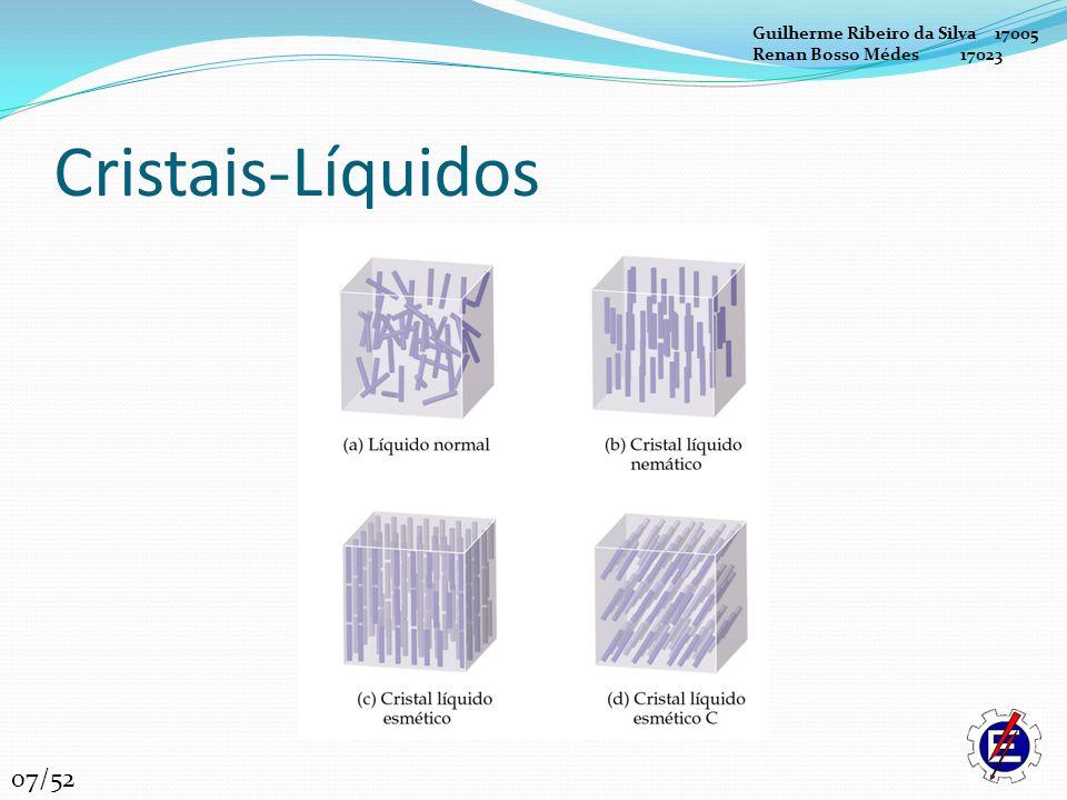 Cristais-Líquidos 07/52 Guilherme Ribeiro da Silva 17005