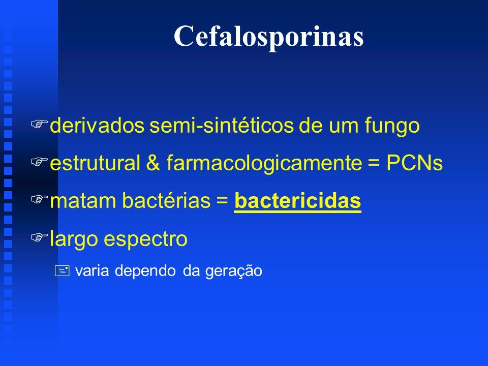 Cefalosporinas derivados semi-sintéticos de um fungo