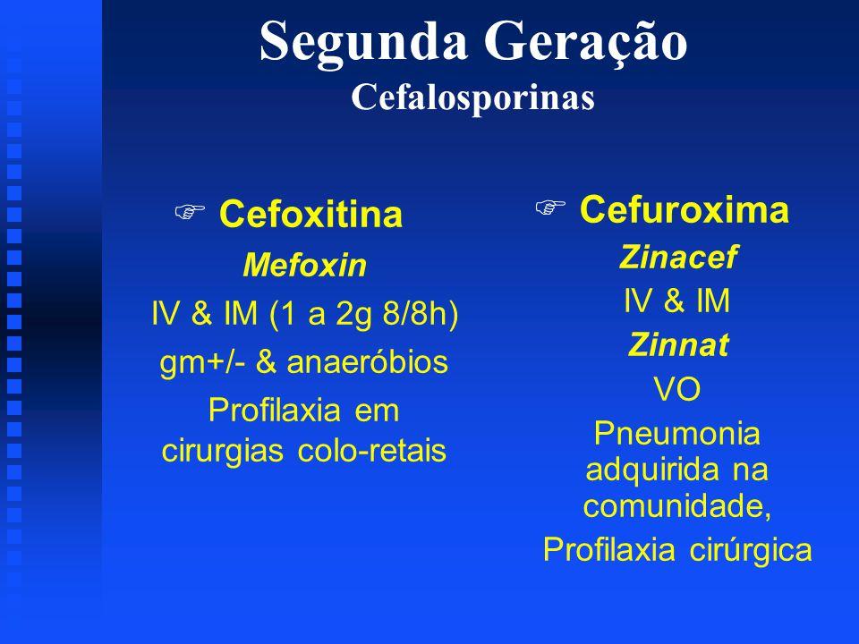 Segunda Geração Cefalosporinas