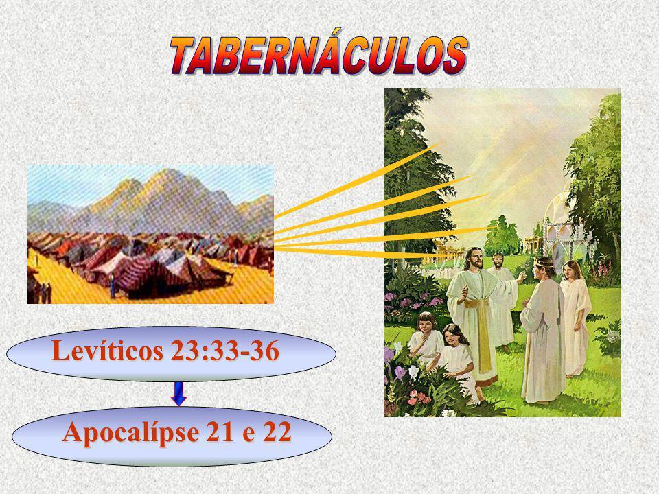 TABERNÁCULOS Levíticos 23:33-36 Apocalípse 21 e 22