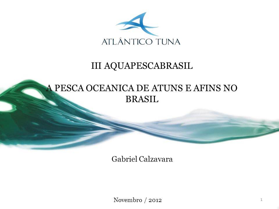 A PESCA OCEANICA DE ATUNS E AFINS NO BRASIL