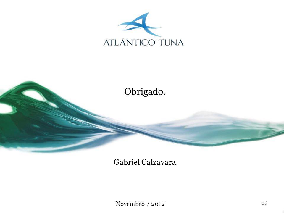 Obrigado. Gabriel Calzavara Novembro / 2012