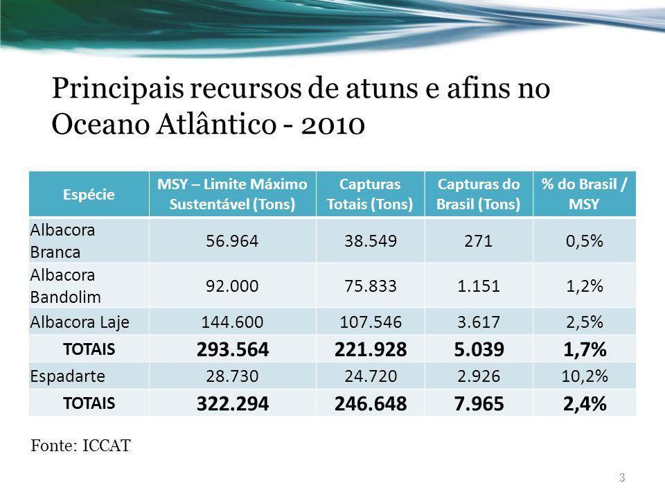 Principais recursos de atuns e afins no Oceano Atlântico - 2010