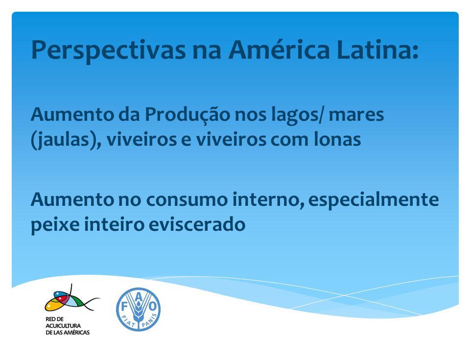 Perspectivas na América Latina: