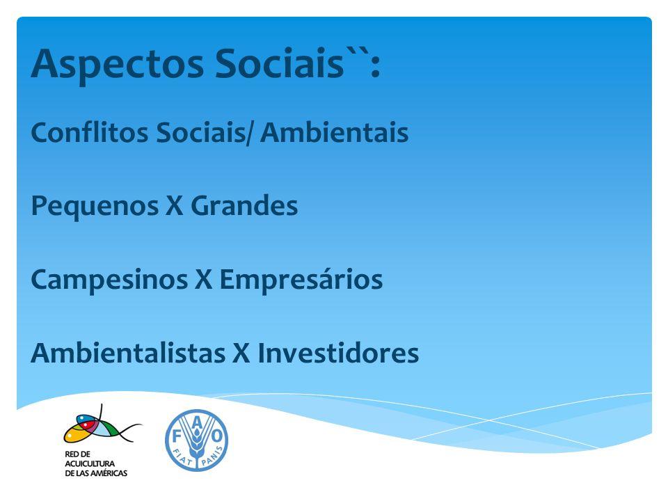 Aspectos Sociais``: Conflitos Sociais/ Ambientais Pequenos X Grandes