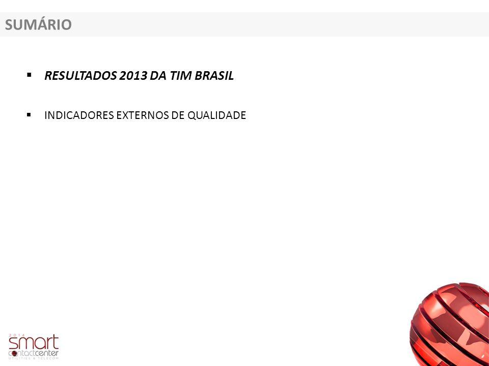 SUMÁRIO RESULTADOS 2013 DA TIM BRASIL