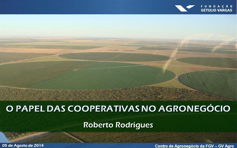 Agenda Segurança Alimentar: o papel do Brasil