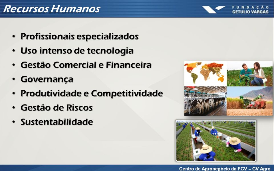 Mundo* Brasil Matriz Energética (2012) – Brasil: exemplo OCDE