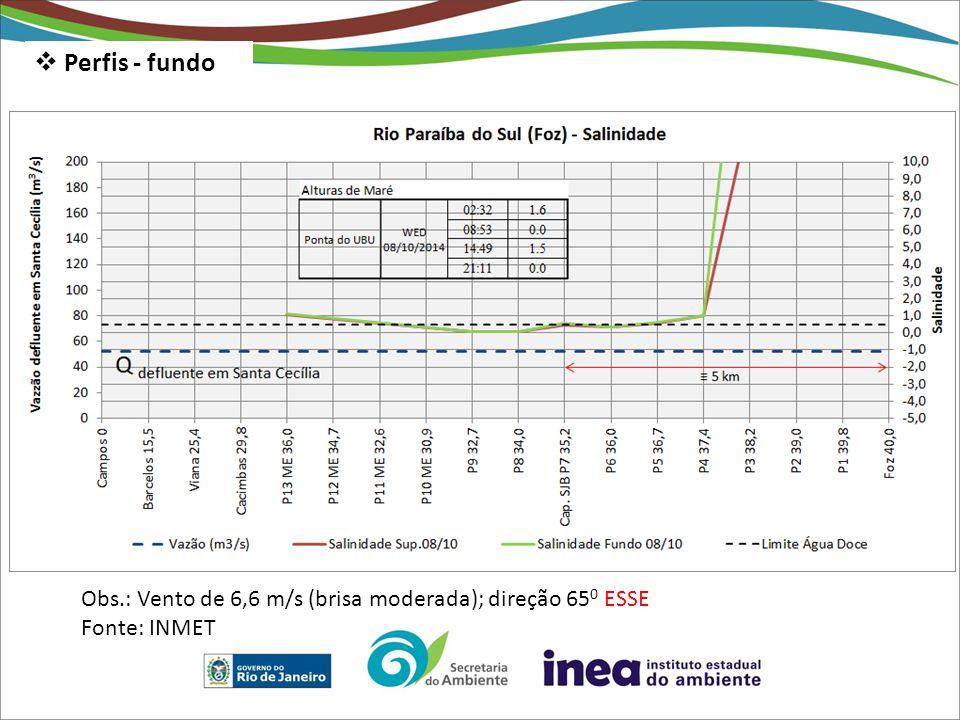 Perfis - fundo Obs.: Vento de 6,6 m/s (brisa moderada); direção 650 ESSE Fonte: INMET