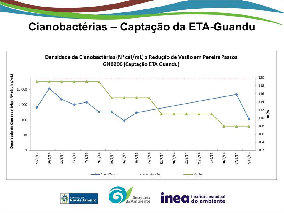 Cianobactérias – Captação da ETA-Guandu