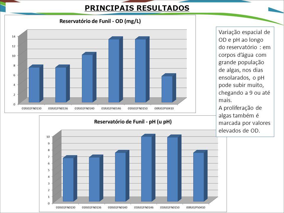 PRINCIPAIS RESULTADOS