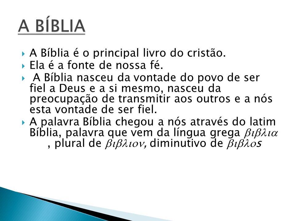 A BÍBLIA A Bíblia é o principal livro do cristão.
