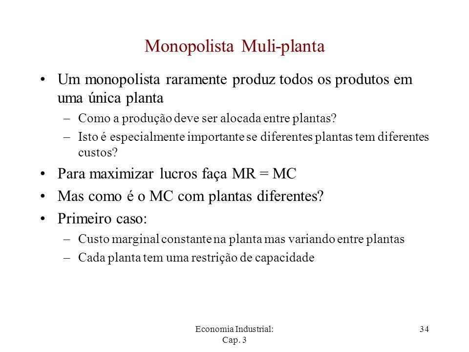 Monopolista Muli-planta