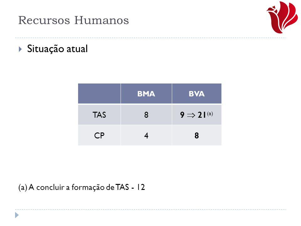 Recursos Humanos Situação atual (a) A concluir a formação de TAS - 12