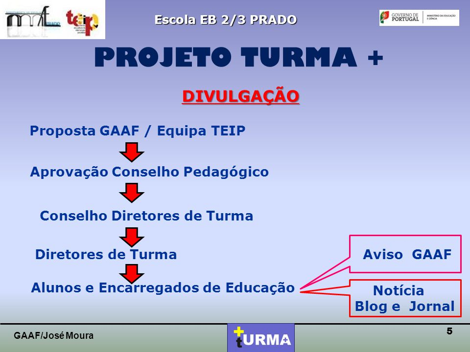 PROJETO TURMA + DIVULGAÇÃO Proposta GAAF / Equipa TEIP
