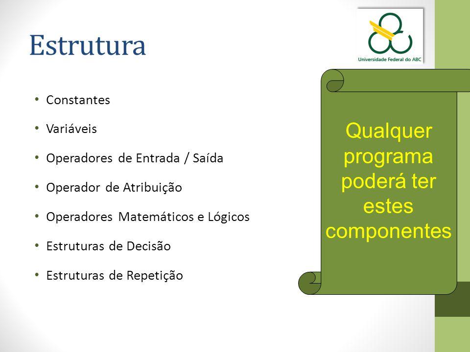 Estrutura Qualquer programa poderá ter estes componentes Constantes