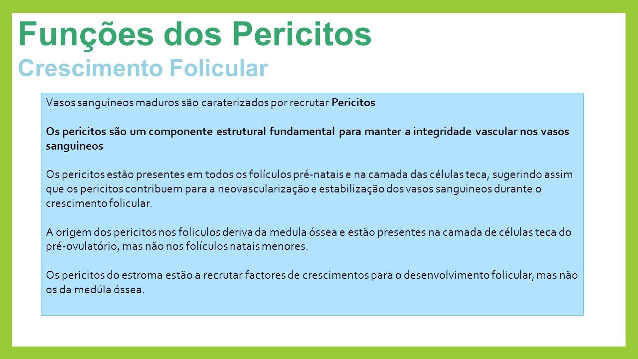 Funções dos Pericitos Crescimento Folicular