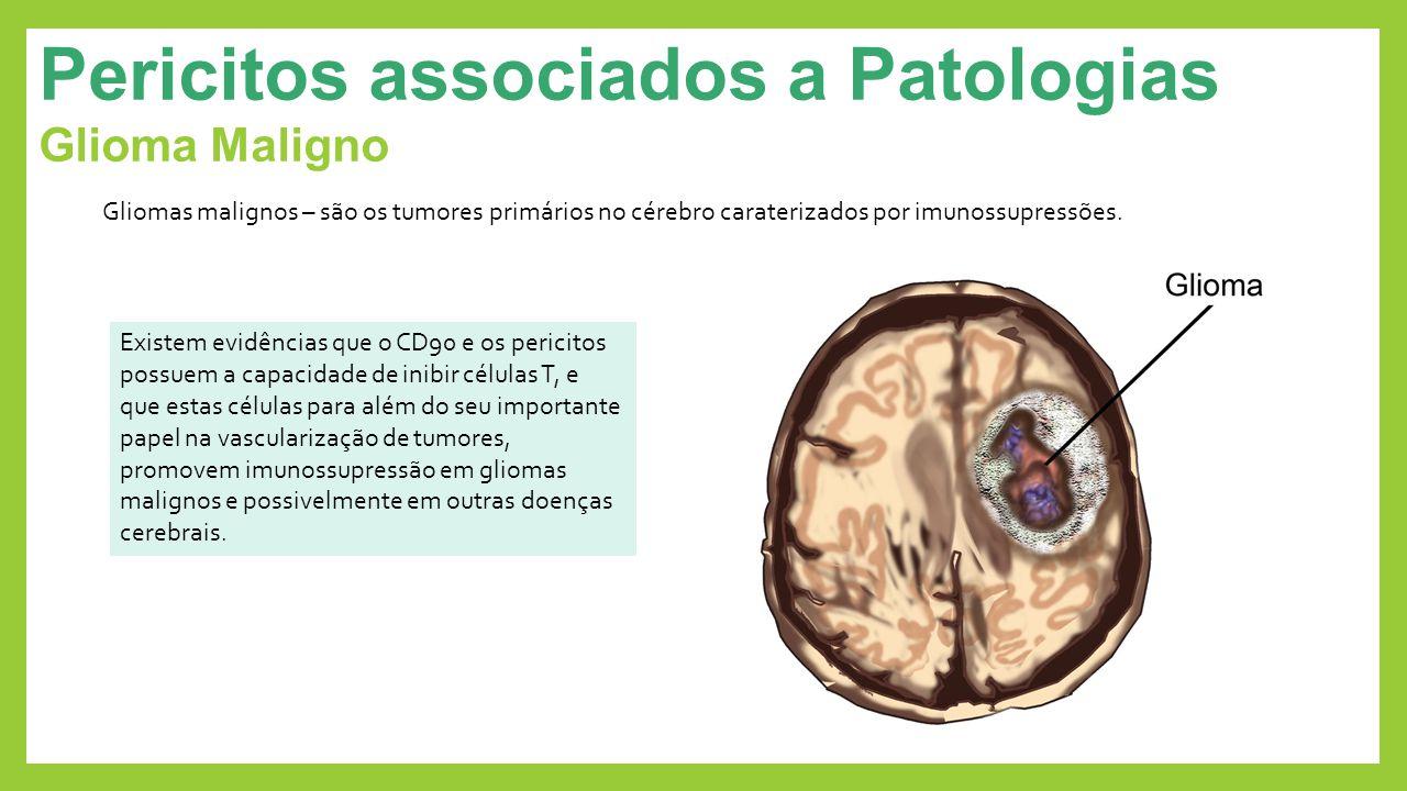 Pericitos associados a Patologias