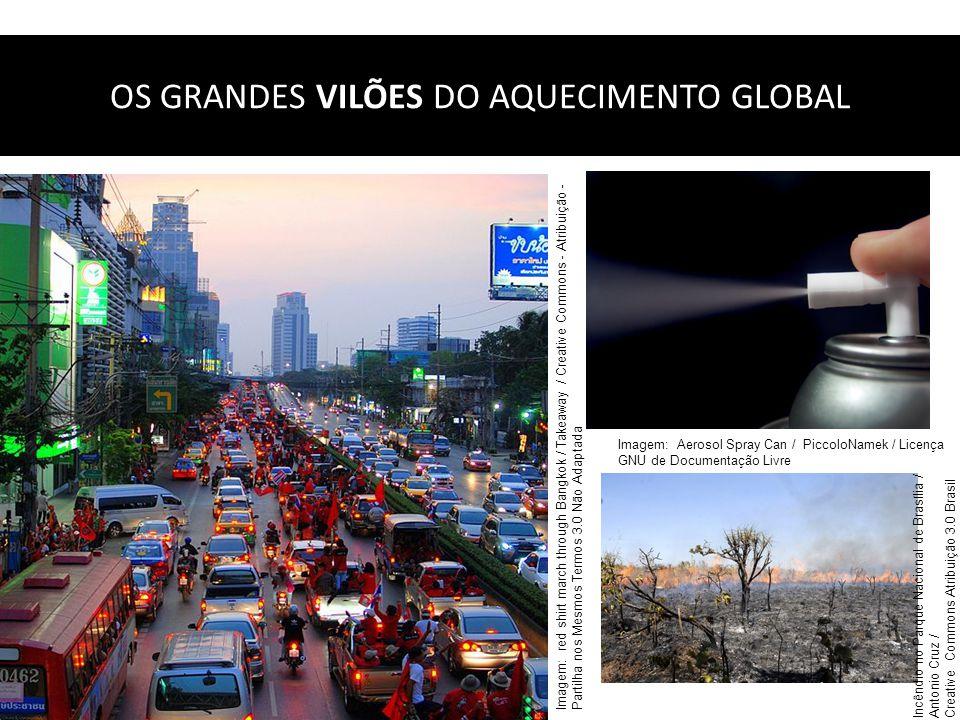 OS GRANDES VILÕES DO AQUECIMENTO GLOBAL