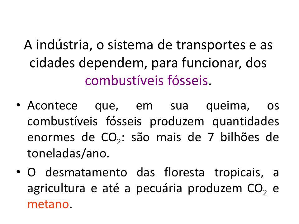 BIOLOGIA, 3º ANO Intervenção humana e os desequilíbrios ambientais.