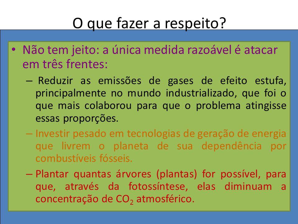 BIOLOGIA, 3º ANO Intervenção humana e os desequilíbrios ambientais. O que fazer a respeito