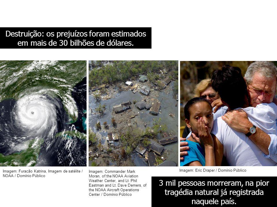 BIOLOGIA, 3º ANO Intervenção humana e os desequilíbrios ambientais. Destruição: os prejuízos foram estimados em mais de 30 bilhões de dólares.