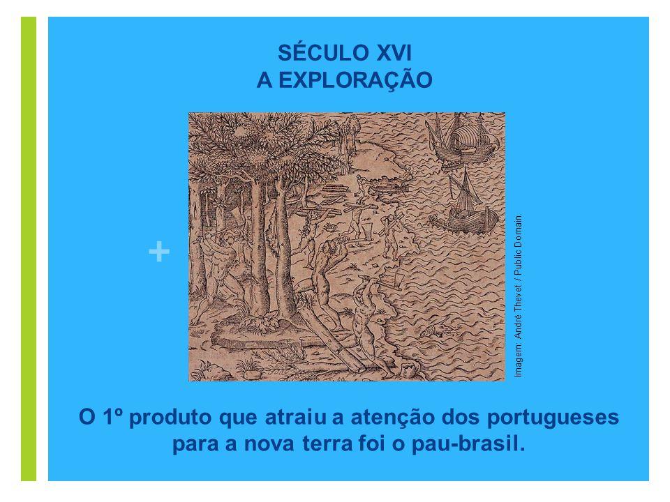 SÉCULO XVI A EXPLORAÇÃO