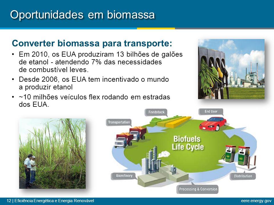 Oportunidades em biomassa
