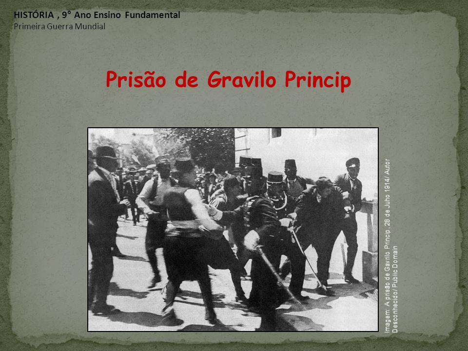 Prisão de Gravilo Princip