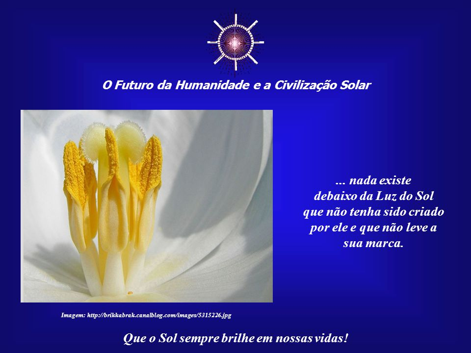 ☼ ... nada existe debaixo da Luz do Sol que não tenha sido criado