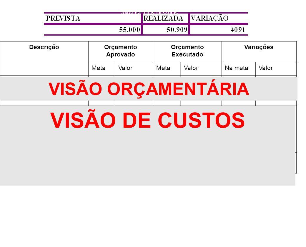 VISÃO DE CUSTOS VISÃO ORÇAMENTÁRIA