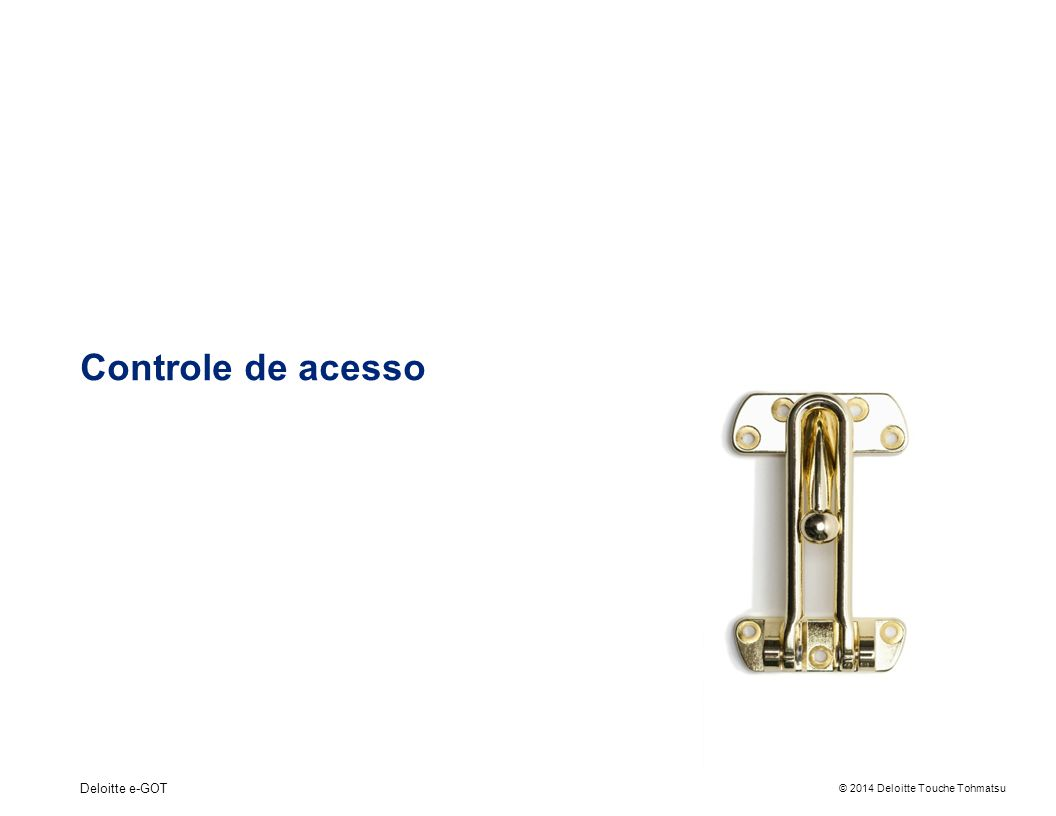 Controle de acesso Deloitte e-GOT 4